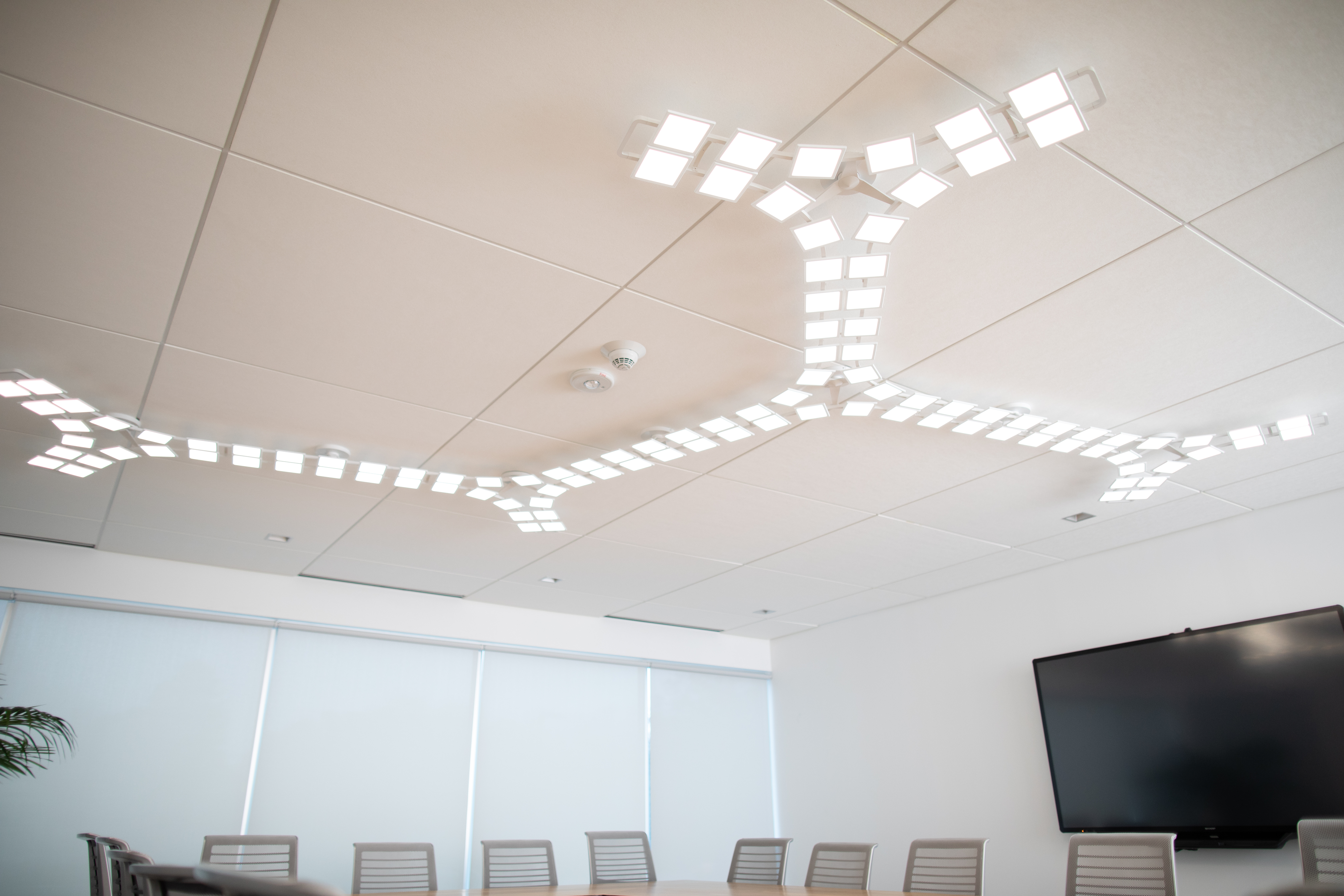 OLED Light in Conference Room